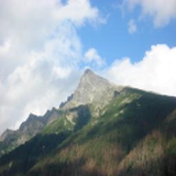 Mount lesa datovania